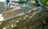 2020/10/04(日)【実技】step up2・岩場登りと懸垂下降(横須賀市・鷹取山) <催行・募集中>
